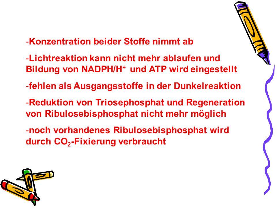 -Konzentration beider Stoffe nimmt ab -Lichtreaktion kann nicht mehr ablaufen und Bildung von NADPH/H + und ATP wird eingestellt -fehlen als Ausgangss