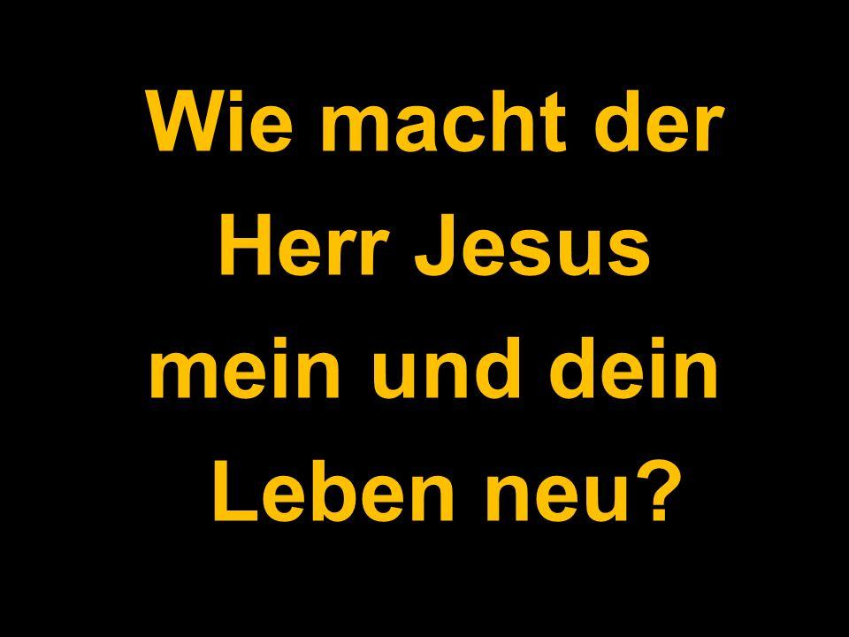 Wie macht der Herr Jesus mein und dein Leben neu?