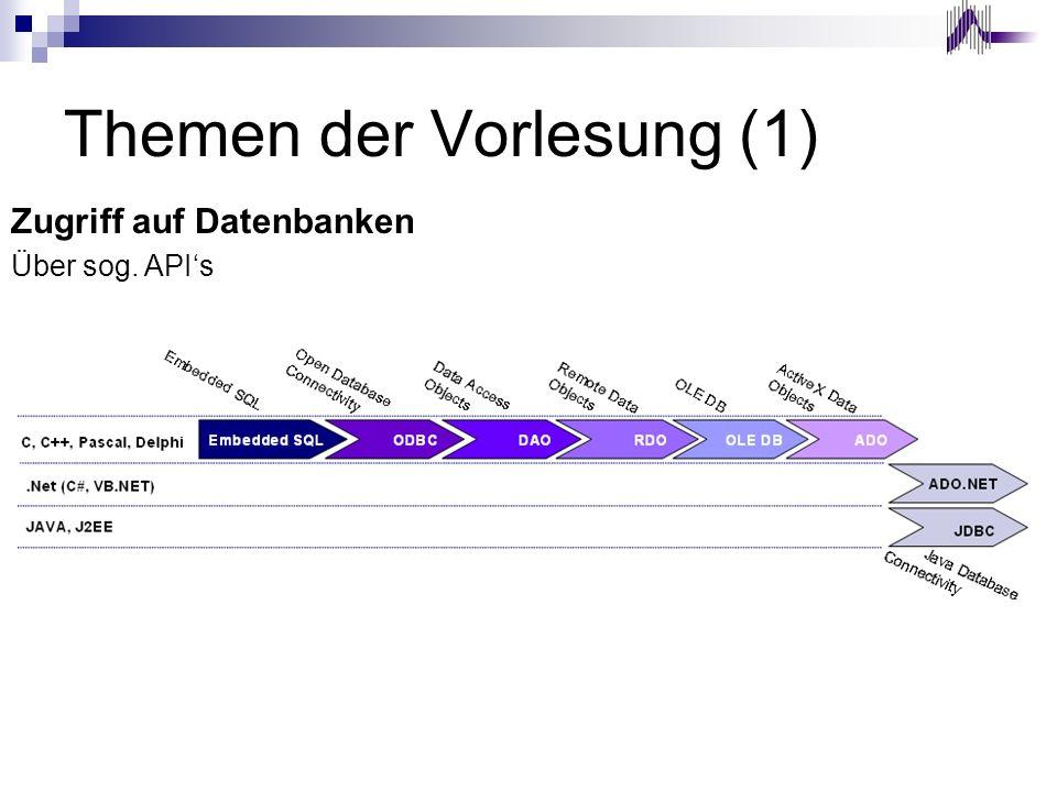 Themen der Vorlesung (1) Zugriff auf Datenbanken Über sog. APIs