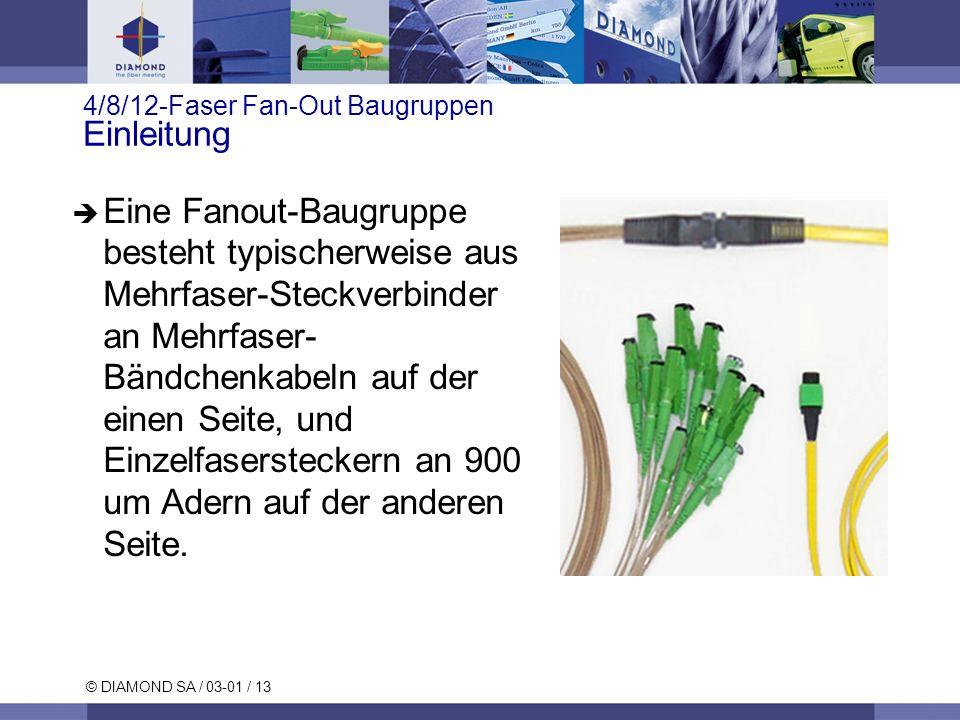 © DIAMOND SA / 03-01 / 13 4/8/12-Faser Fan-Out Baugruppen Einleitung Eine Fanout-Baugruppe besteht typischerweise aus Mehrfaser-Steckverbinder an Mehr