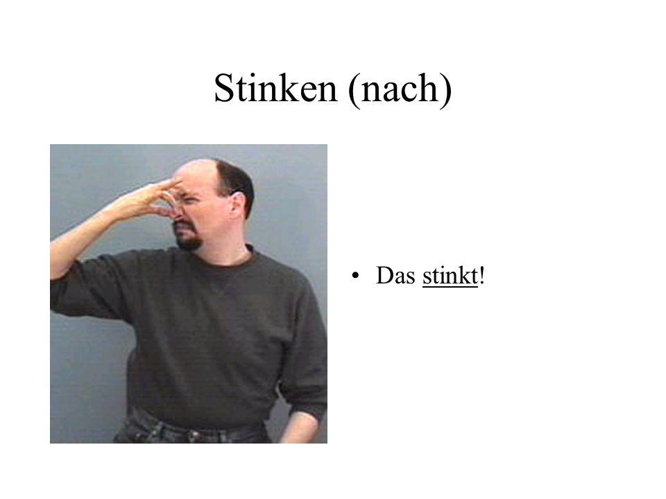 Stinken (nach) Das stinkt!