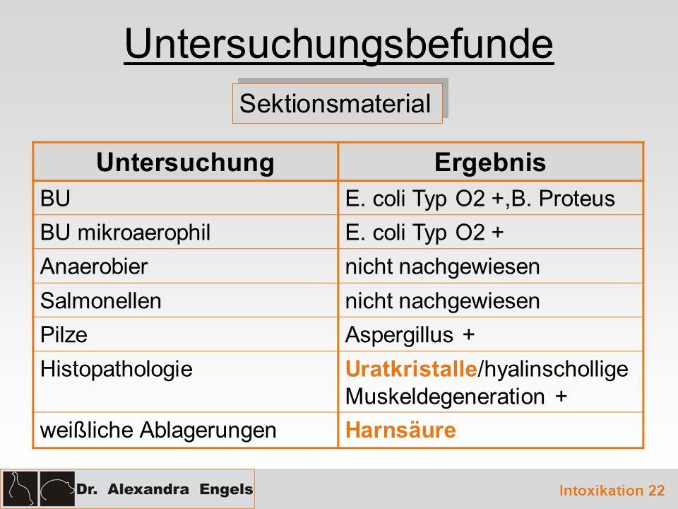 Untersuchungsbefunde Sektionsmaterial UntersuchungErgebnis BUE.
