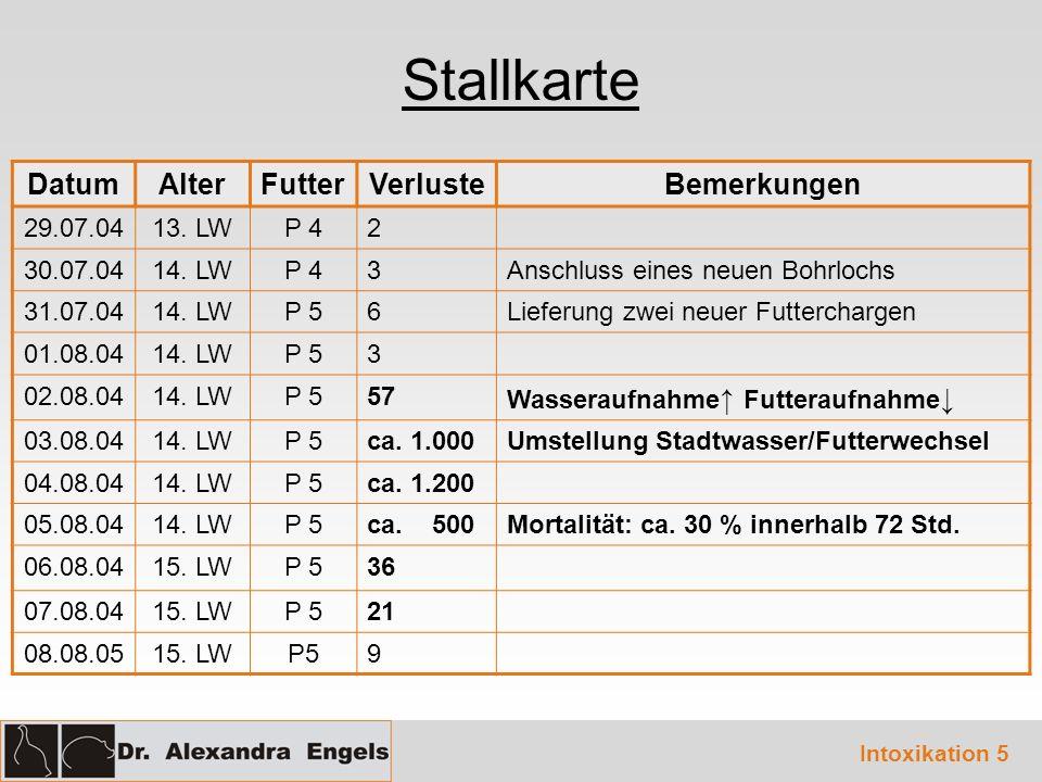 Stallkarte DatumAlterFutterVerlusteBemerkungen 29.07.0413.