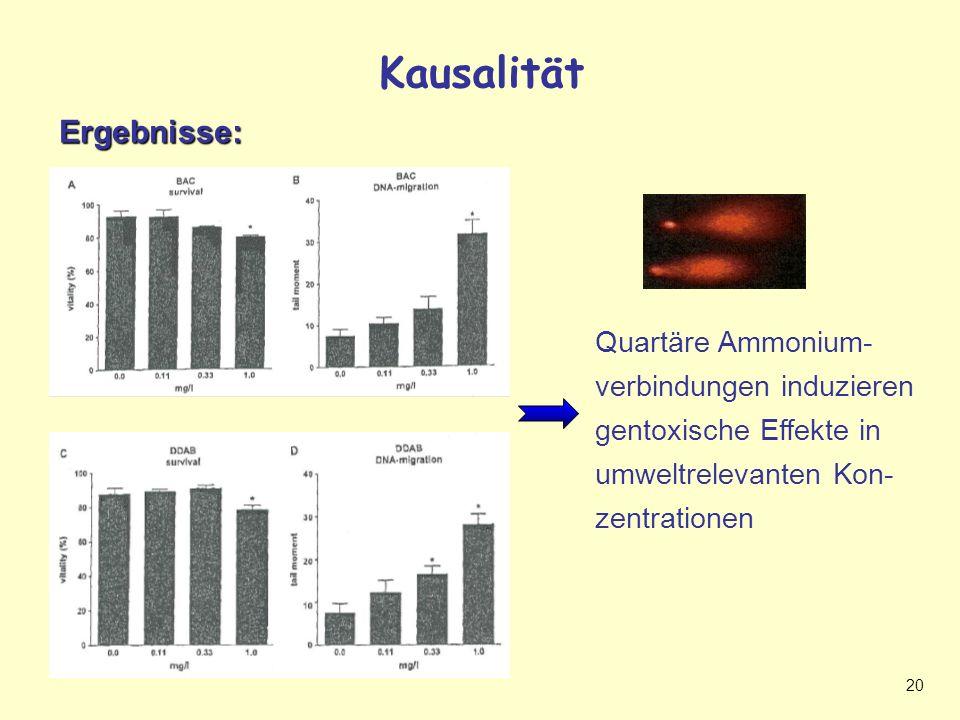 20 Kausalität (2): Ergebnisse quartäre AmmoniumverbindungenErgebnisse: Quartäre Ammonium- verbindungen induzieren gentoxische Effekte in umweltrelevanten Kon- zentrationen Kausalität