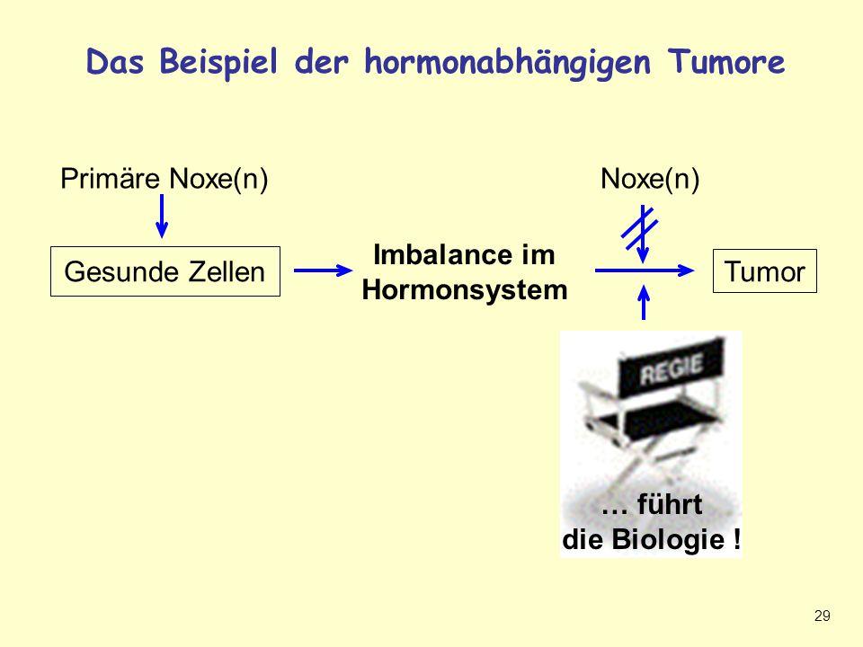 29 Das Beispiel der hormonabhängigen Tumore Hormonabhängiger Tumor Tumor Gesunde Zellen Imbalance im Hormonsystem Noxe(n) … führt die Biologie .