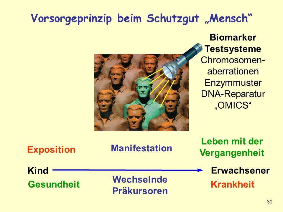 30 Vorsorgeprinzip beim Schutzgut Mensch Schutzgut Mensch – Vorsorgeprinzip + Biomarker Exposition Wechselnde Präkursoren GesundheitKrankheit Manifestation Leben mit der Vergangenheit Kind Erwachsener Biomarker Testsysteme Chromosomen- aberrationen Enzymmuster DNA-Reparatur OMICS