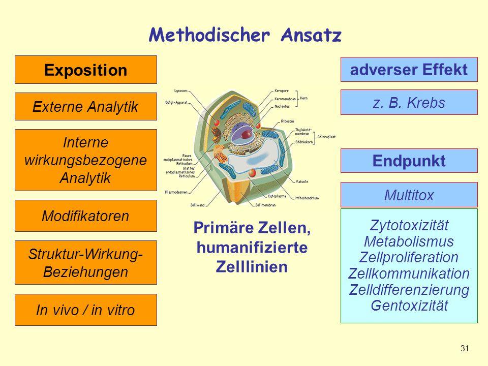 31 Methodischer Ansatz Methodische Möglichkeiten Interne wirkungsbezogene Analytik Multitox Primäre Zellen, humanifizierte Zelllinien Modifikatoren Externe Analytik z.
