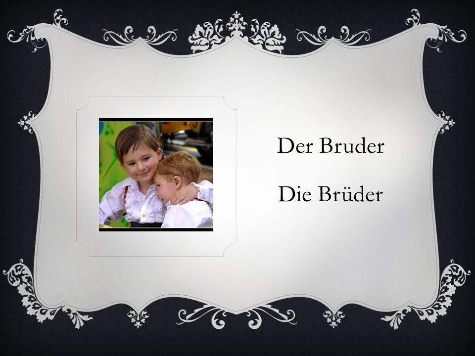 Der Bruder Die Brüder