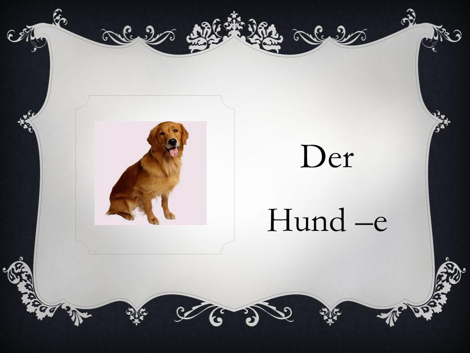 Der Hund –e