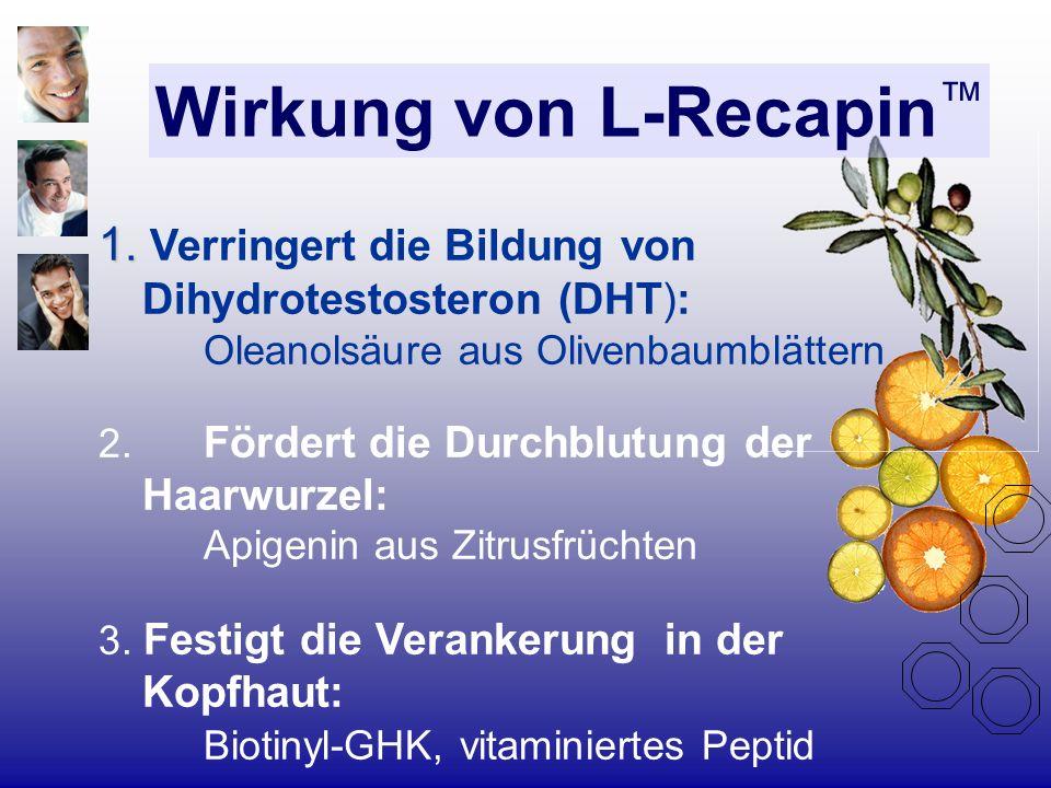 Wirkung von L-Recapin 1. 1. Verringert die Bildung von Dihydrotestosteron (DHT): Oleanolsäure aus Olivenbaumblättern 2. Fördert die Durchblutung der H