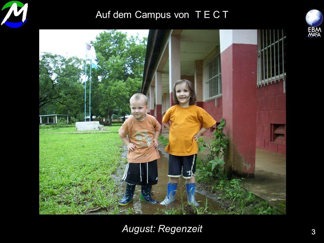 August: Regenzeit 3 Auf dem Campus von T E C T