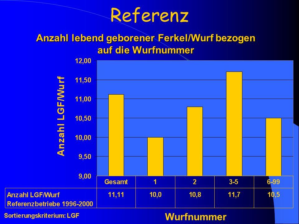 Anzahl lebend geborener Ferkel/Wurf bezogen auf die Wurfnummer Referenz Wurfnummer