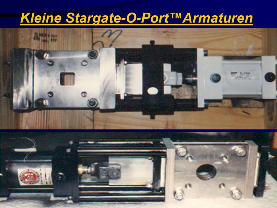 Stainless Valve Co. Kleine Stargate-O-PortArmaturen