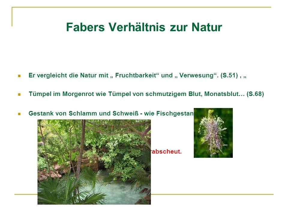 Fabers Verhältnis zur Natur Er vergleicht die Natur mit Fruchtbarkeit und Verwesung. (S.51), Tümpel im Morgenrot wie Tümpel von schmutzigem Blut, Mona