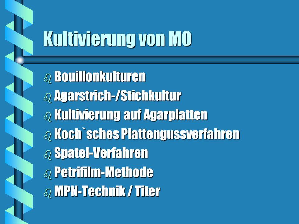 Kultivierung von MO b Bouillonkulturen b Agarstrich-/Stichkultur b Kultivierung auf Agarplatten b Koch`sches Plattengussverfahren b Spatel-Verfahren b