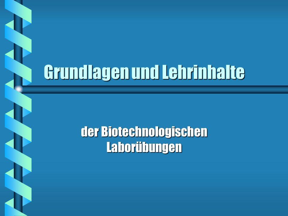 Grundlagen und Lehrinhalte der Biotechnologischen Laborübungen