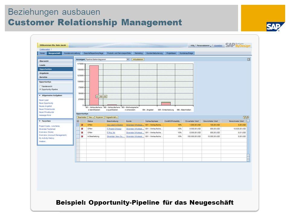 © SAP 2008 SAP-IBIS-Tagung / Seite 17 Beziehungen ausbauen Customer Relationship Management Beispiel: Opportunity-Pipeline für das Neugeschäft