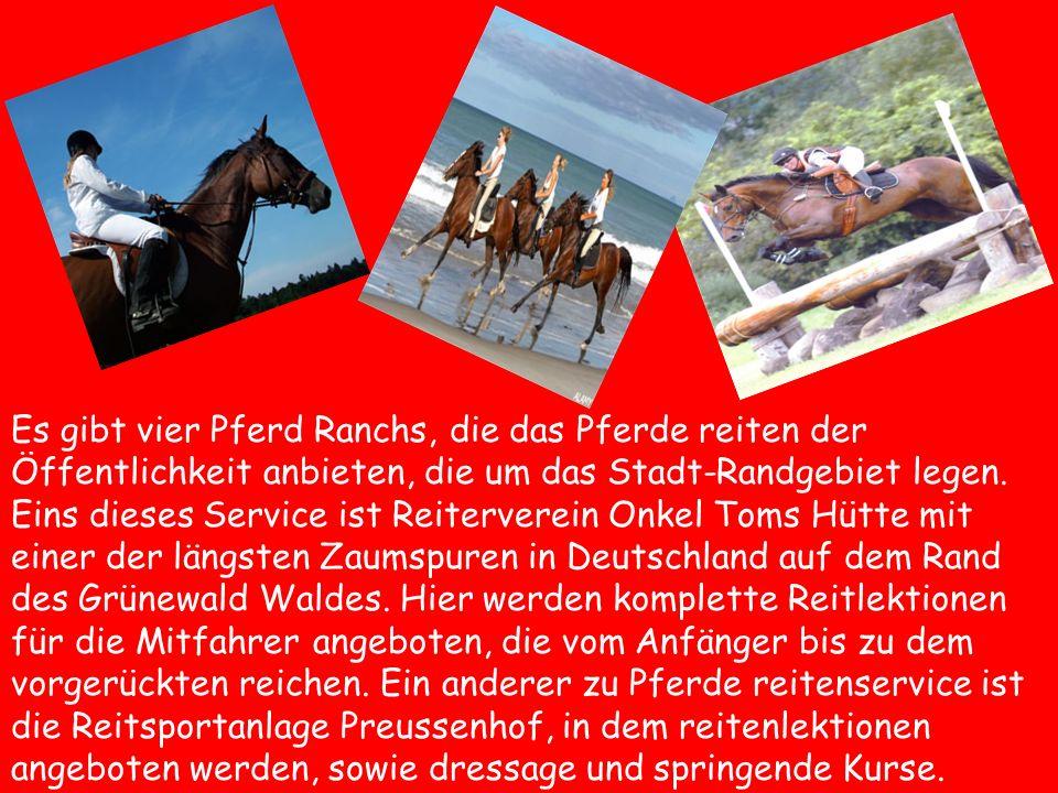 Es gibt vier Pferd Ranchs, die das Pferde reiten der Öffentlichkeit anbieten, die um das Stadt-Randgebiet legen. Eins dieses Service ist Reiterverein