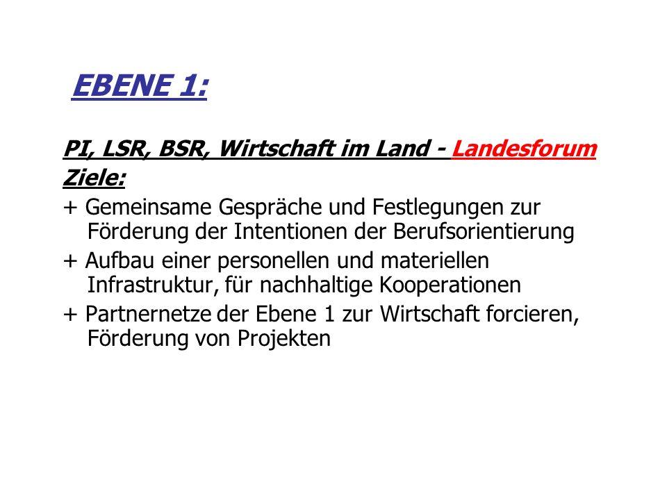 EBENE 1: PI, LSR, BSR, Wirtschaft im Land - Landesforum Ziele: + Gemeinsame Gespräche und Festlegungen zur Förderung der Intentionen der Berufsorienti