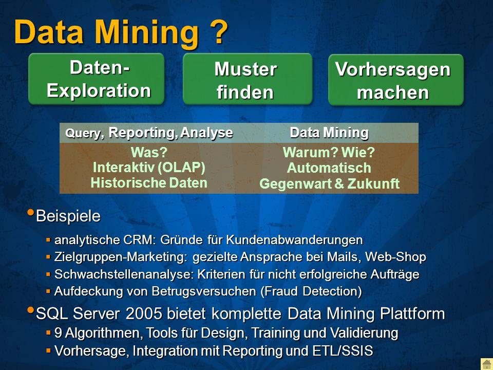Data Mining ? Daten- Exploration Muster finden Vorhersagen machen Query, Reporting, Analyse Data Mining Was? Interaktiv (OLAP) Historische Daten Warum