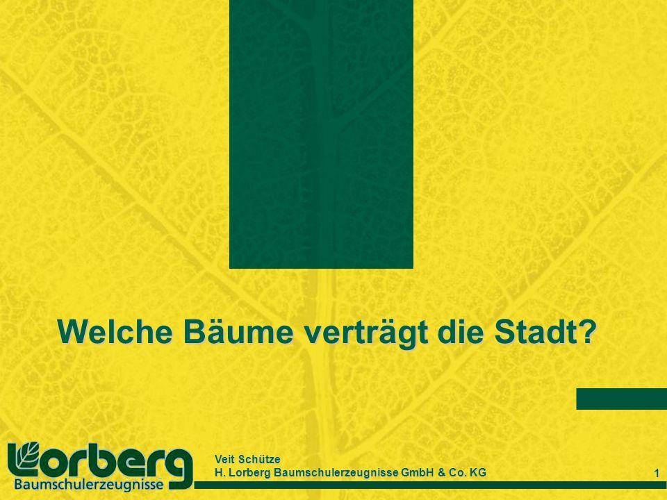 Veit Schütze H. Lorberg Baumschulerzeugnisse GmbH & Co. KG 1 Welche Bäume verträgt die Stadt?