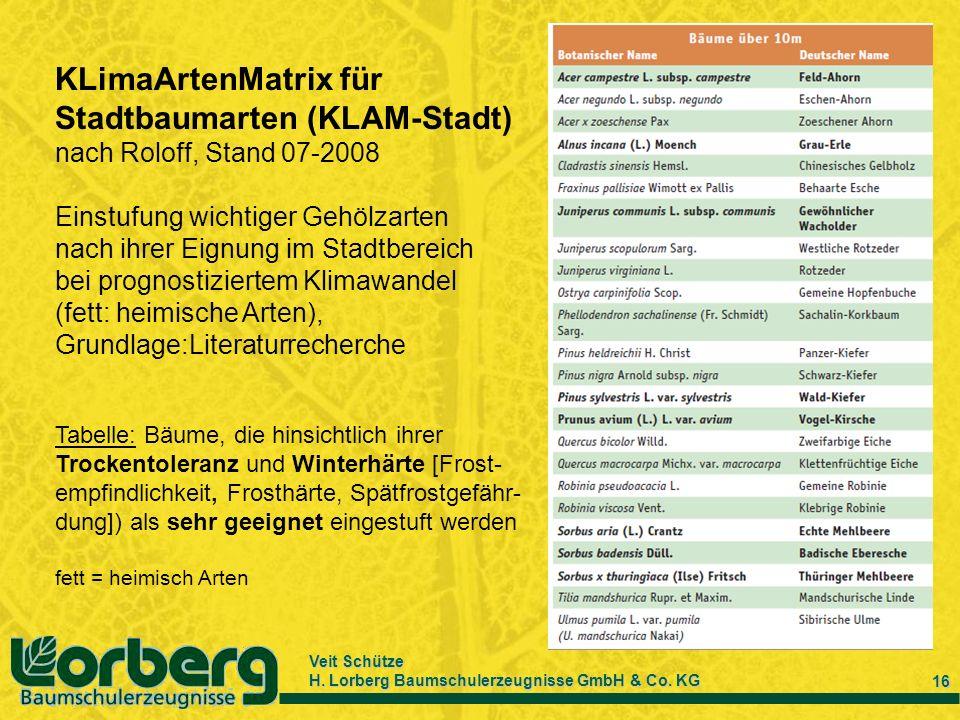 Veit Schütze H. Lorberg Baumschulerzeugnisse GmbH & Co. KG 16 KLimaArtenMatrix für Stadtbaumarten (KLAM-Stadt) nach Roloff, Stand 07-2008 Einstufung w