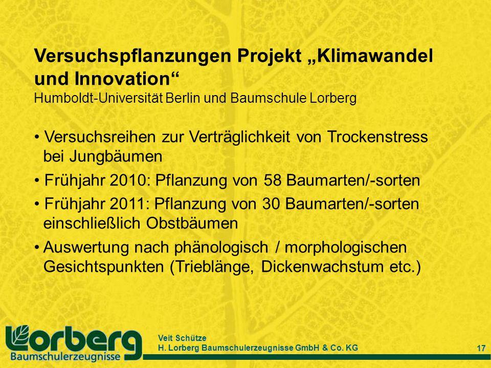 Veit Schütze H. Lorberg Baumschulerzeugnisse GmbH & Co. KG 17 Versuchspflanzungen Projekt Klimawandel und Innovation Humboldt-Universität Berlin und B