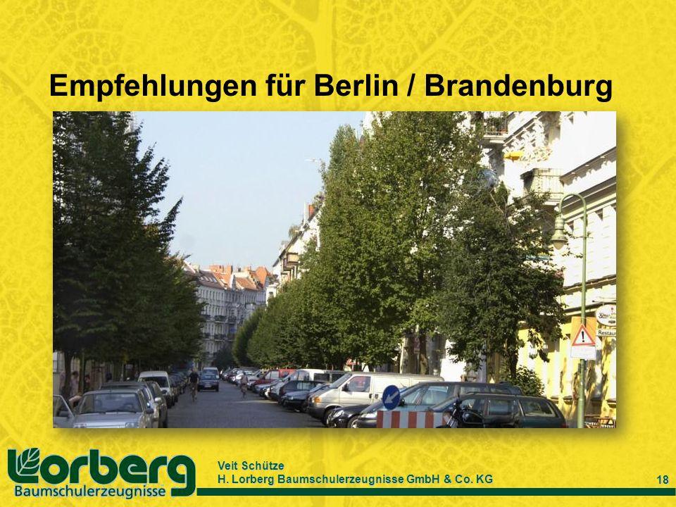 Veit Schütze H. Lorberg Baumschulerzeugnisse GmbH & Co. KG 18 Empfehlungen für Berlin / Brandenburg