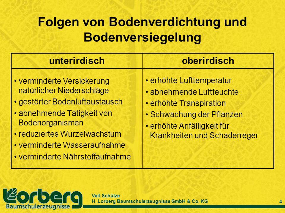 Veit Schütze H. Lorberg Baumschulerzeugnisse GmbH & Co. KG 4 Folgen von Bodenverdichtung und Bodenversiegelung unterirdischoberirdisch verminderte Ver
