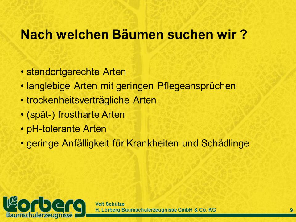 Veit Schütze H. Lorberg Baumschulerzeugnisse GmbH & Co. KG 9 Nach welchen Bäumen suchen wir ? standortgerechte Arten langlebige Arten mit geringen Pfl