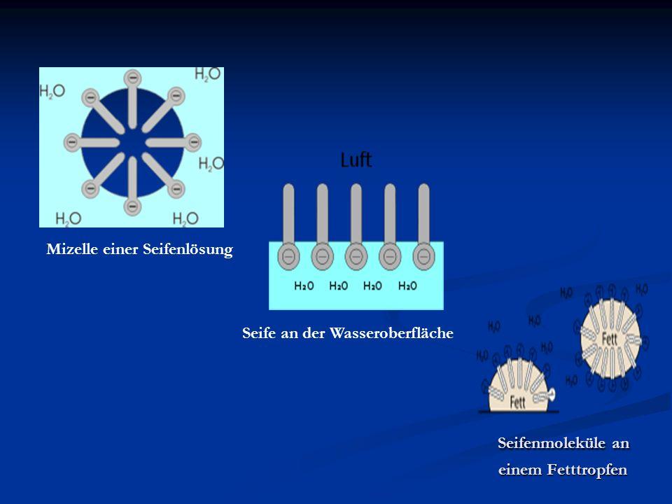 Seifenmoleküle an einem Fetttropfen Seifenmoleküle an einem Fetttropfen Seife an der Wasseroberfläche Mizelle einer Seifenlösung