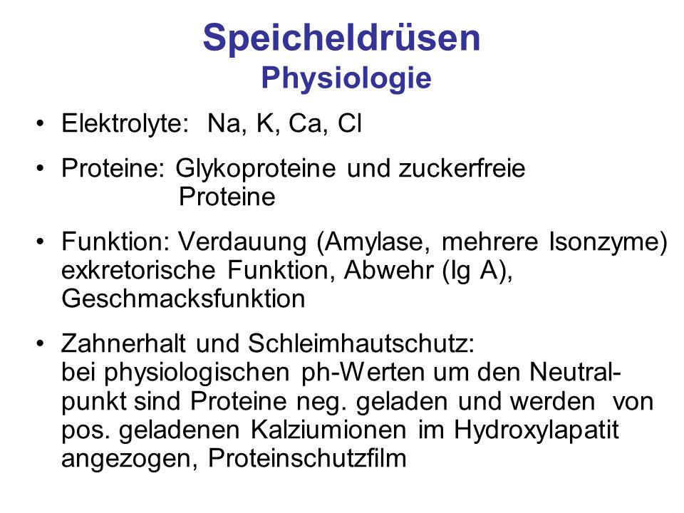 Speicheldrüsen Physiologie Elektrolyte: Na, K, Ca, Cl Proteine: Glykoproteine und zuckerfreie Proteine Funktion: Verdauung (Amylase, mehrere Isonzyme)