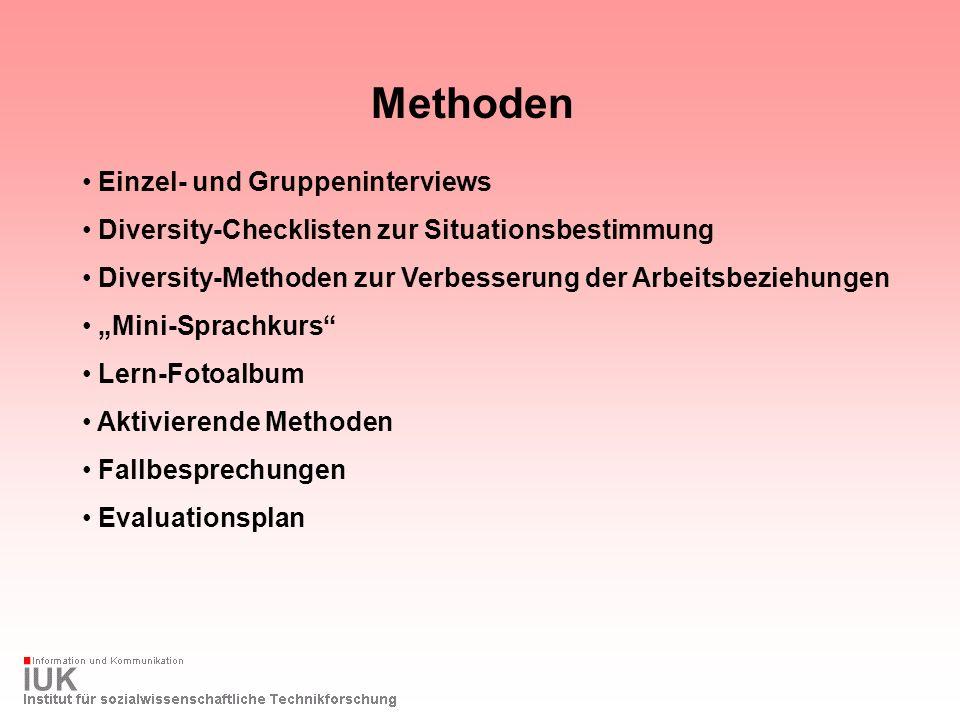 Methoden Einzel- und Gruppeninterviews Diversity-Checklisten zur Situationsbestimmung Diversity-Methoden zur Verbesserung der Arbeitsbeziehungen Mini-
