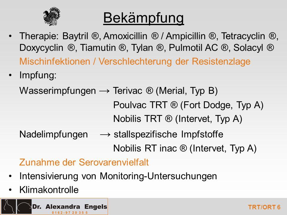 Bekämpfung Therapie: Baytril ®, Amoxicillin ® / Ampicillin ®, Tetracyclin ®, Doxycyclin ®, Tiamutin ®, Tylan ®, Pulmotil AC ®, Solacyl ® Mischinfektio