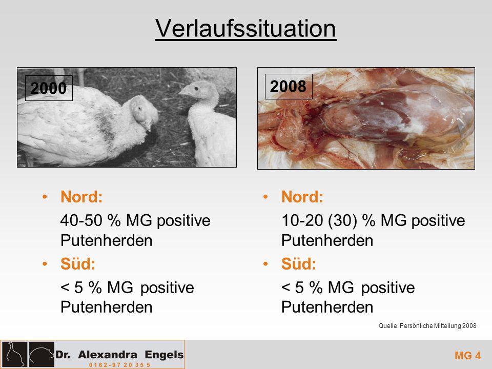 Verlaufssituation MG 4 Nord: 40-50 % MG positive Putenherden Süd: < 5 % MGpositive Putenherden 2008 2000 Quelle: Persönliche Mitteilung 2008 Nord: 10-
