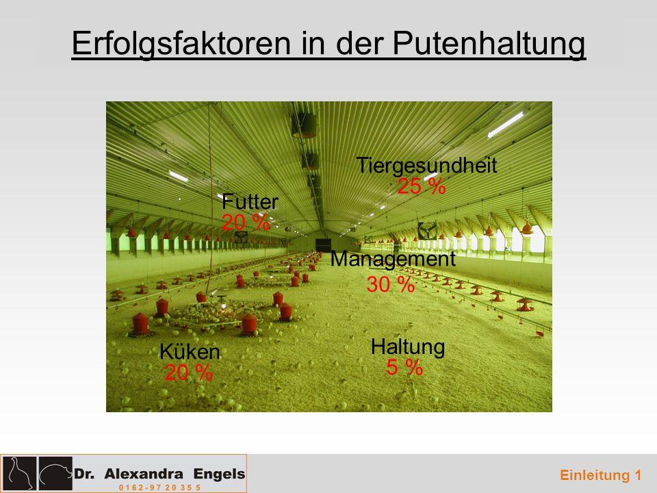 Erfolgsfaktoren in der Putenhaltung Management Haltung Futter Küken Tiergesundheit 25 % 5 % 30 % 20 % Einleitung 1