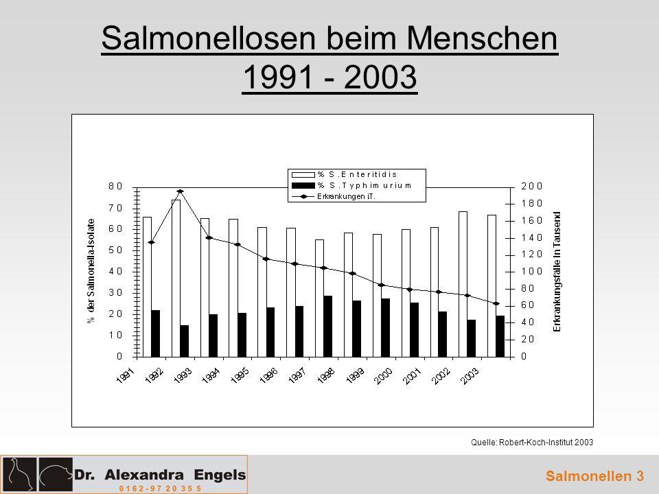 Salmonellosen beim Menschen 1991 - 2003 Quelle: Robert-Koch-Institut 2003 Salmonellen 3