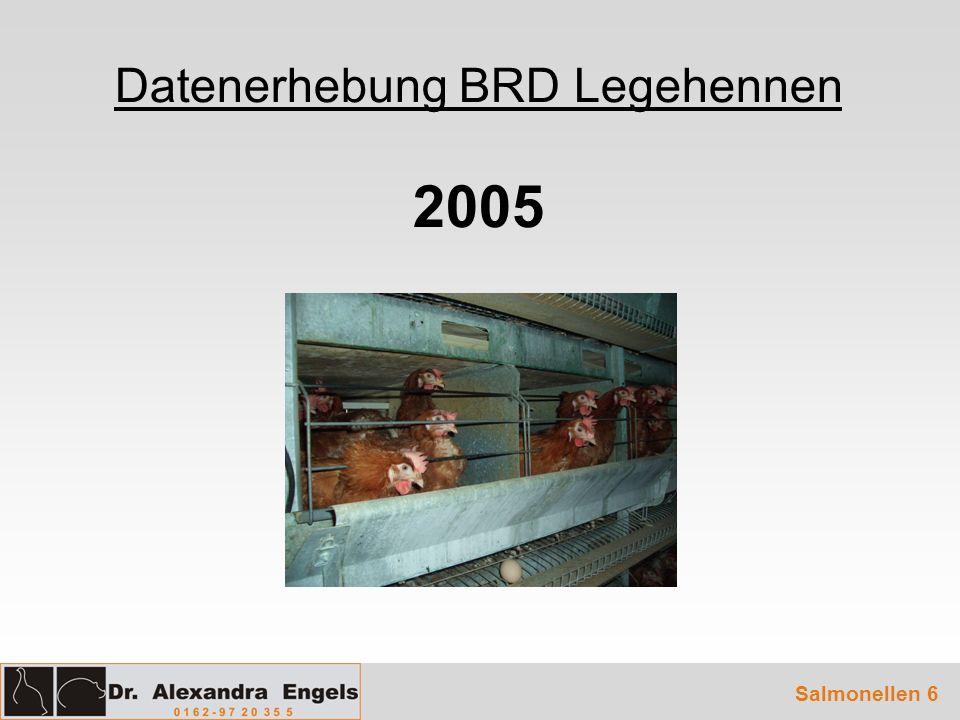 Datenerhebung BRD Legehennen 2005 Salmonellen 6