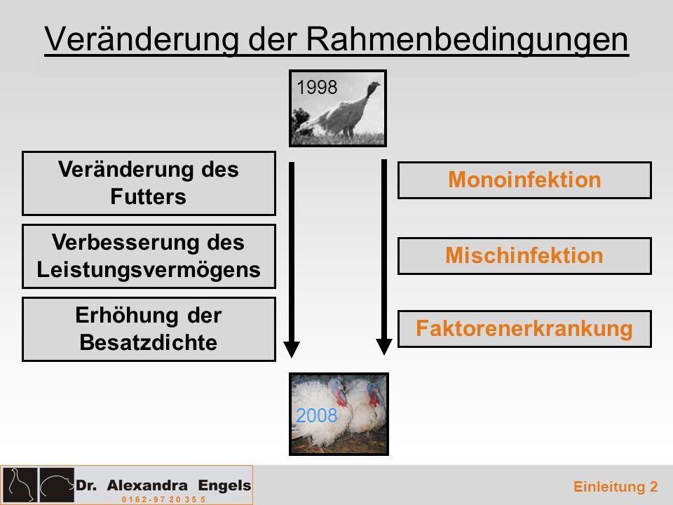 Veränderung der Rahmenbedingungen Einleitung 2 Veränderung des Futters Verbesserung des Leistungsvermögens Erhöhung der Besatzdichte Monoinfektion Mis
