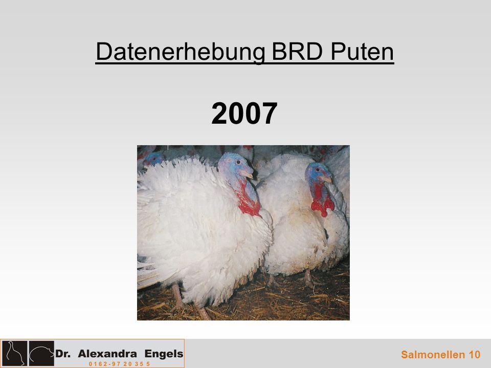 Datenerhebung BRD Puten 2007 Salmonellen 10