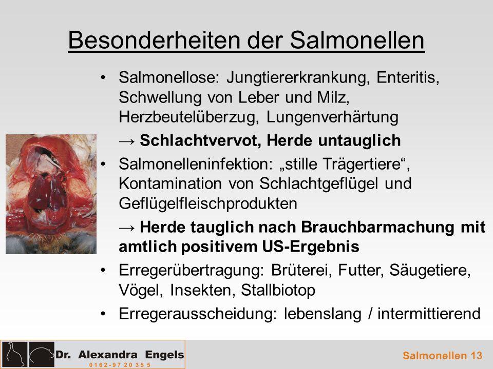 Salmonellen 13 Besonderheiten der Salmonellen Salmonellose: Jungtiererkrankung, Enteritis, Schwellung von Leber und Milz, Herzbeutelüberzug, Lungenver
