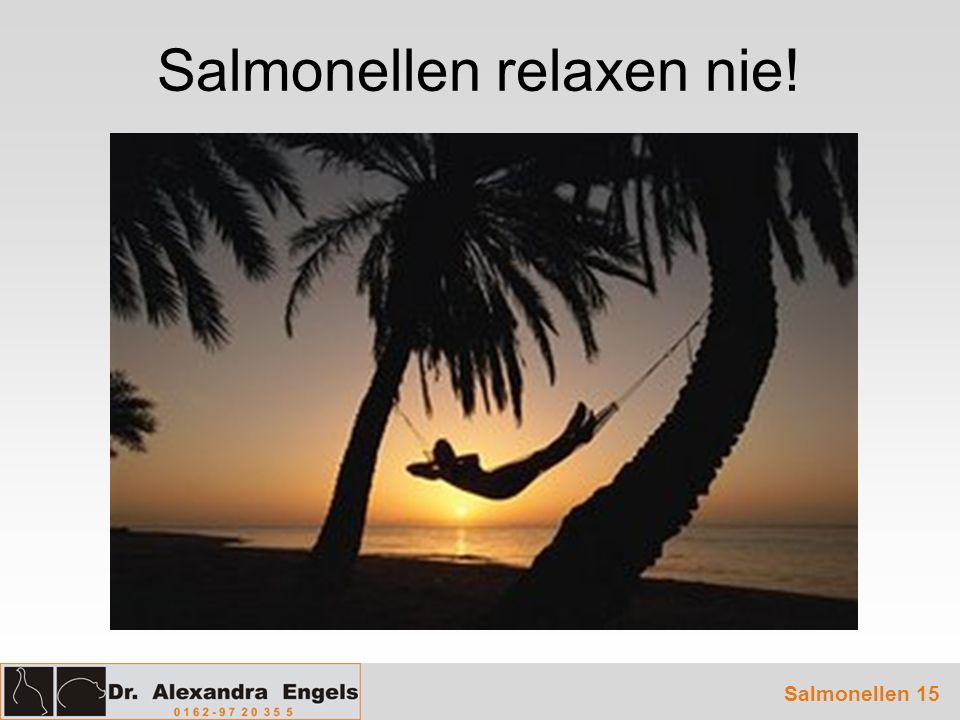 Salmonellen 15 Salmonellen relaxen nie!