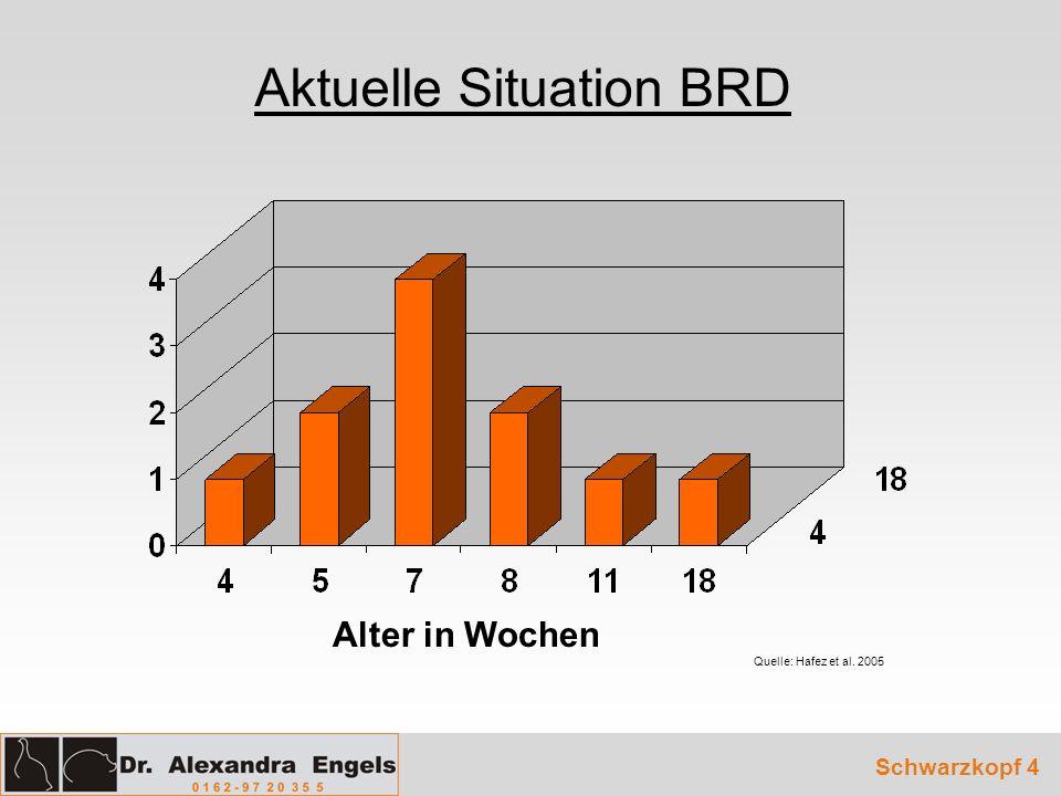 Aktuelle Situation BRD Quelle: Hafez et al. 2005 Schwarzkopf 4 Alter in Wochen