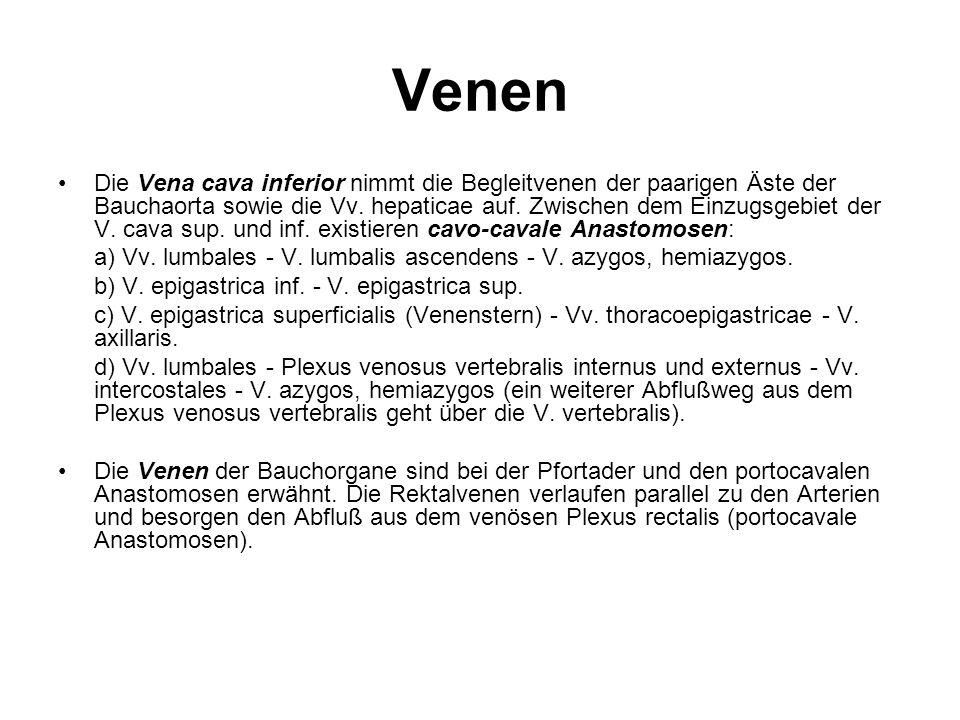 Venen Die Vena cava inferior nimmt die Begleitvenen der paarigen Äste der Bauchaorta sowie die Vv. hepaticae auf. Zwischen dem Einzugsgebiet der V. ca