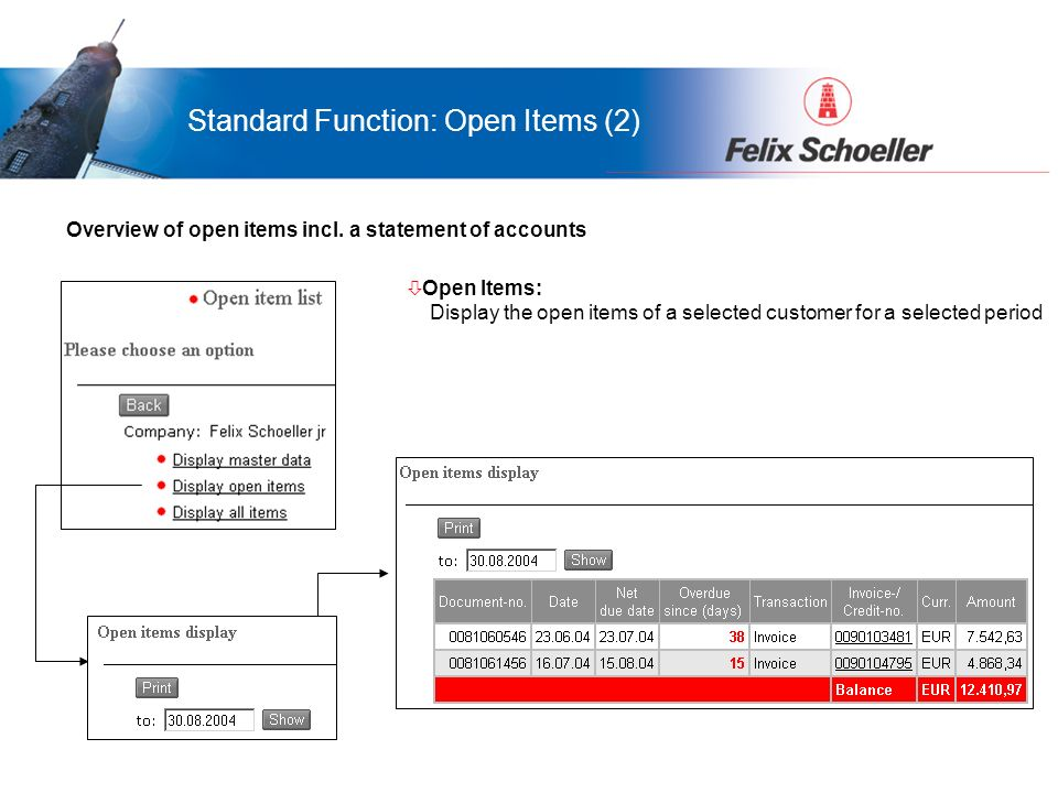 Vorteile für LamiGraf...was bringt das Portal Ihnen... ò Open Items: Display the open items of a selected customer for a selected period Standard Func