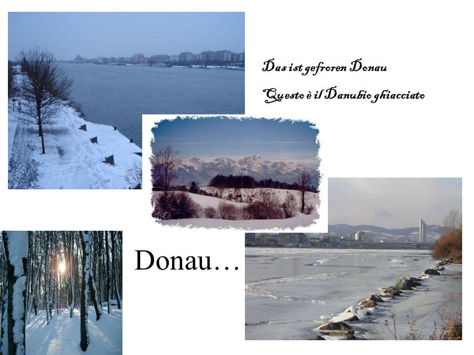 Donau… Das ist gefroren Donau Questo è il Danubio ghiacciato
