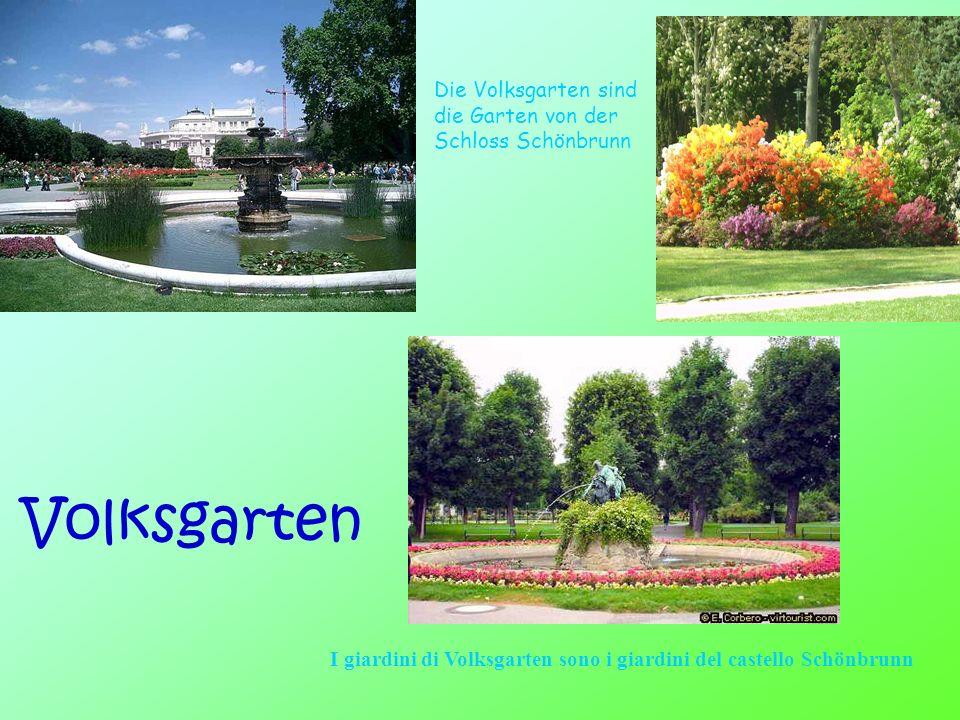 Volksgarten Die Volksgarten sind die Garten von der Schloss Schönbrunn I giardini di Volksgarten sono i giardini del castello Schönbrunn