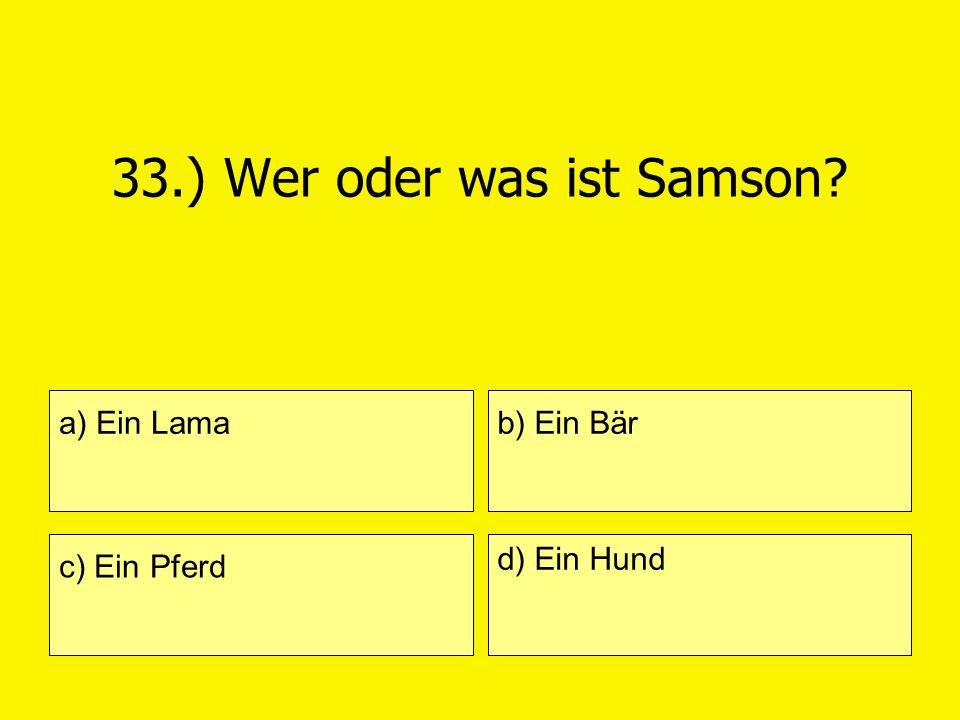 33.) Wer oder was ist Samson? a) Ein Lama c) Ein Pferd b) Ein Bär d) Ein Hund