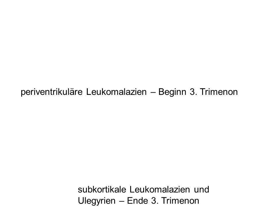 periventrikuläre Leukomalazien – Beginn 3. Trimenon subkortikale Leukomalazien und Ulegyrien – Ende 3. Trimenon
