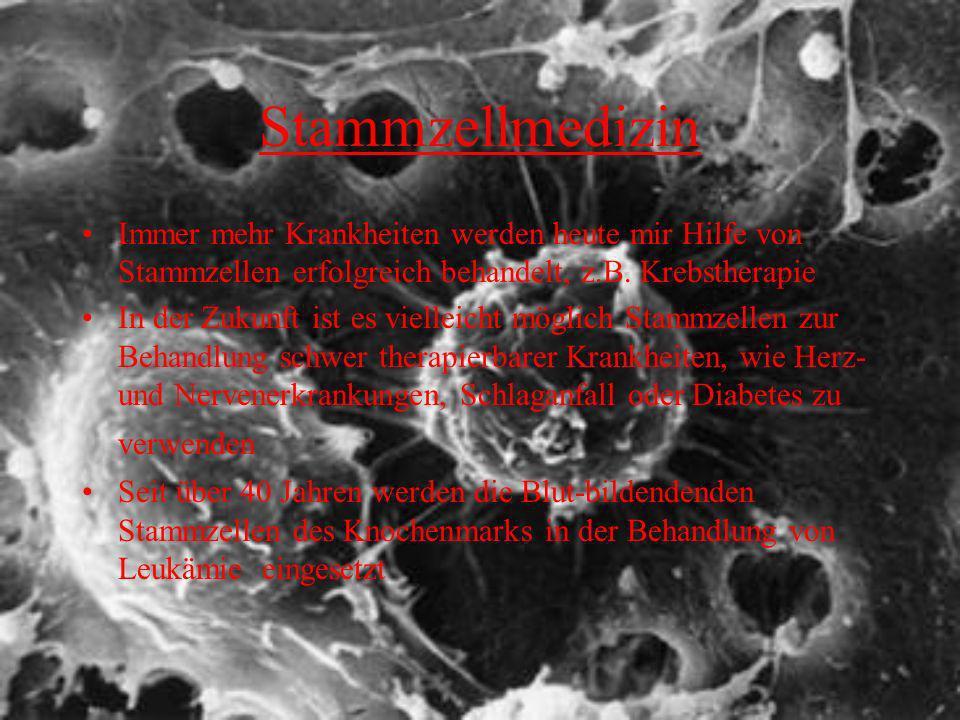 Stammzellmedizin Immer mehr Krankheiten werden heute mir Hilfe von Stammzellen erfolgreich behandelt, z.B. Krebstherapie In der Zukunft ist es viellei